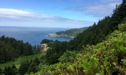 Hike and a Pint: Neahkahnie Mountain to Cape Falcon