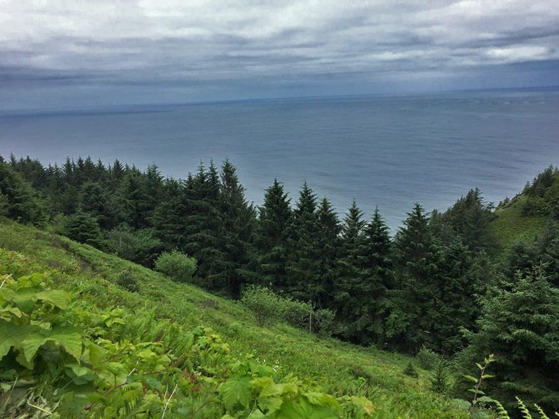 Neahkahnie Mountain to Cape Falcon hike, Oregon coastline, Pacific Northwest trails