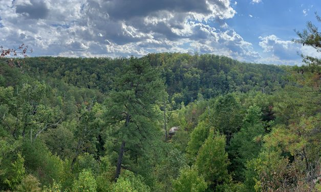Hike and a Pint: Rough Trail at Red River Gorge