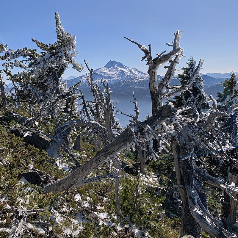 Looking at Mount Jefferson from Olallie Butte Summit